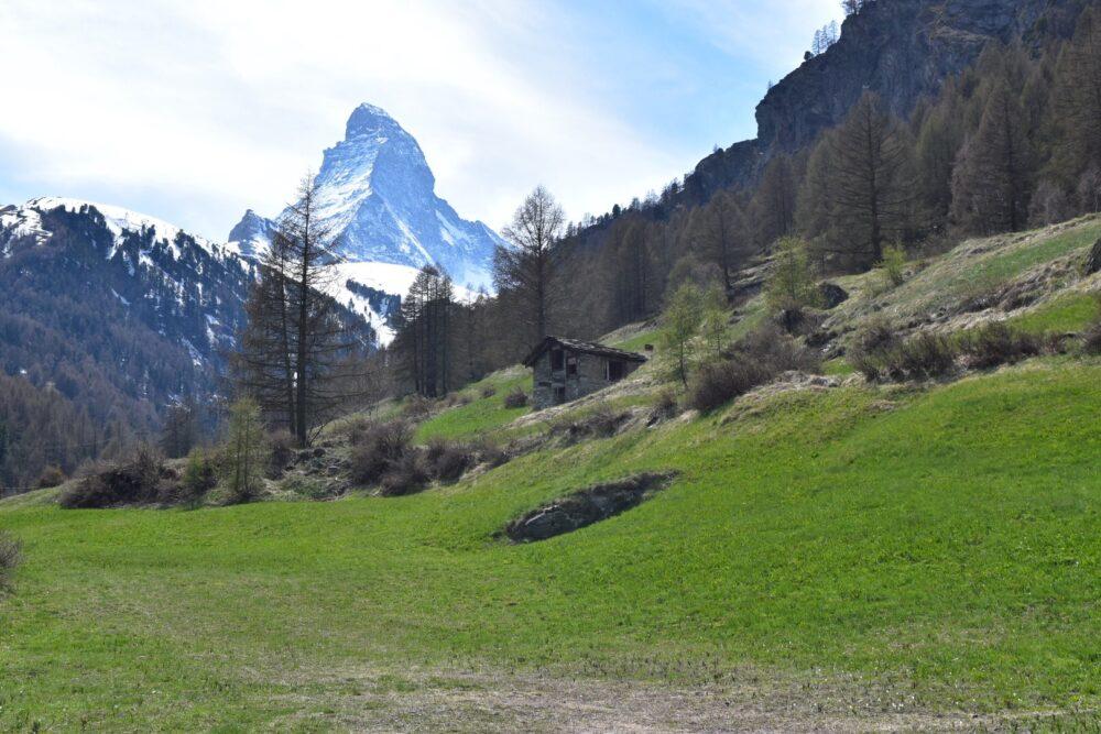 【絶景】スイス~ツェルマット 絶景を求めて