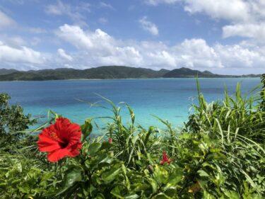 祝!世界遺産登録!奄美大島のおススメ観光地・アクティビティ5選【奄美大島を堪能】